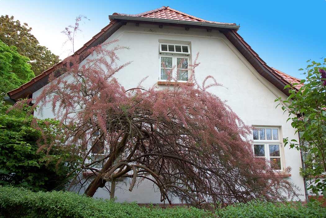Haus Kloster Hiddensee